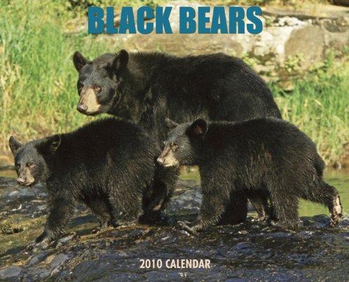 Black Bears 2010 Calendar (Bears 2010 Calendar)