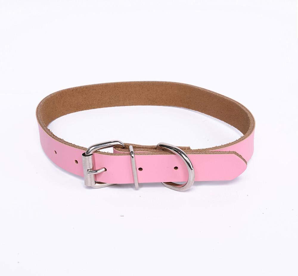 A 2.042cmDixinla Pet collar Leather Dog neck Ring Pet Supplies