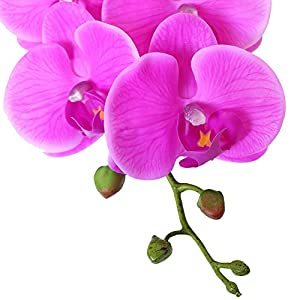 Htmeing 38 Inch Artificial Phalaenopsis Flowers Branches Real Touch (Not Silk) Orchids Flowers for Home Office Wedding Decoration,Pack of 2 (Rose red) 3