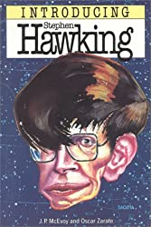 Stephen Hawking For Beginners