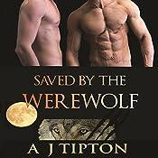 Saved by the Werewolf: Werewolves of Singer Valley | AJ Tipton