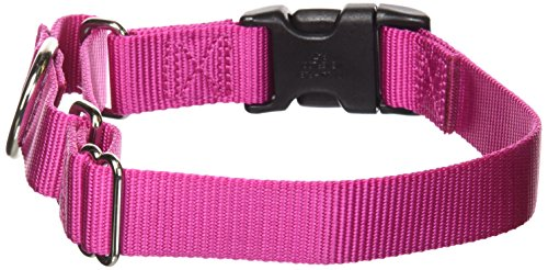 Release Buckle Collar - PetSafe Martingale Collar with Quick Snap Buckle, 1
