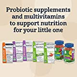 Gerber Soothe Baby Probiotic Drops with 100% Daily