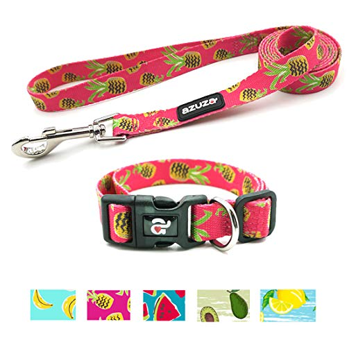 - azuza Dog Collar and Leash Set, Adjustable Nylon Collar with Matching Leash,Pineapple,Medium