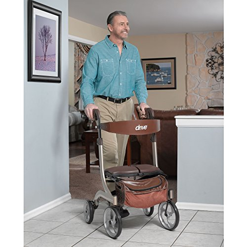 Drive Medical Nitro DLX Euro Style Walker Rollator, Champagne by Drive Medical (Image #4)