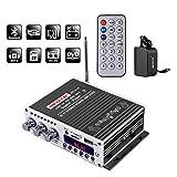 NKTECH 3A Power Adapter HY-V10 FM/MP3/USB/TF/DVD Audio Speaker Car Bluetooth Digital Amplifier Hi-Fi