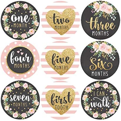 16 Floral Pink Gold Baby Milestone Stickers Girl, 12 Monthly Photo Picture Props for Infant Onesie, Chalkboard 1st Year Months Belly Decals, Scrapbook Memory Registry Gift, Best Shower Basket Present