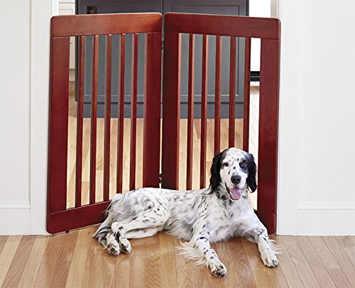 Orvis Free-standing Gate / 36'' Free-standing Gate, 4 Panel by Orvis