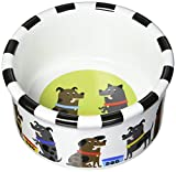 Signature Housewares Pooch Dog Bowl, Small Review