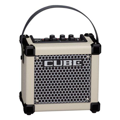Roland Battery Powered Guitar Amplifier
