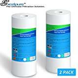 (2-PACK) Big Blue Whole house Sediment Water Filter 4.5'' x 10'' (5 micron)Compatible with DuPont WFHD13001B,Pentek DGD series, RFC series,Culligan RFC-BBSA ,Whirlpool WHKF-GD25BB