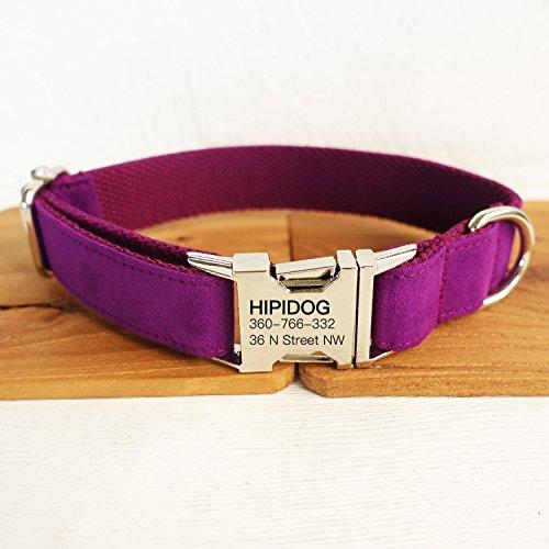 Best Dog Basic Collars