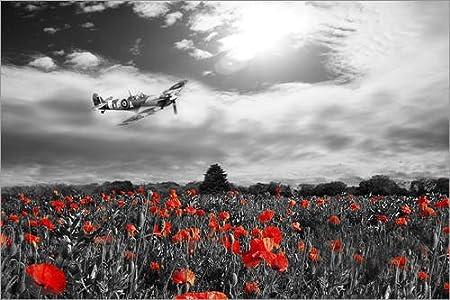 POSTERLOUNGE Acrylic print 30 x 20 cm: Spitfire Poppy Pass by airpowerart