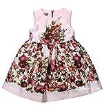 Pink Val Max Dress 9060