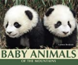 Baby Animals of the Mountains, Carmen Bredeson, 076603562X