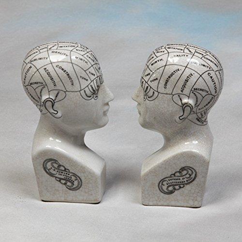Paar Vintage Style Phrenologie-Kopf Buchstützen Keramik Anitqued