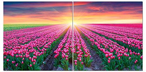 Canvas Wall Art Decor - 24x24 2 Piece Set  - Pink Flowers Fi