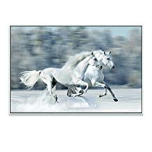 """Live Art Decor - Shadow Box Frame Canvas Wall Art,White Horse in Winter Running Gallop Fast Picture Canvas Print,Modern Frame Animal Artwork for Walls Decor-24""""x 36"""""""