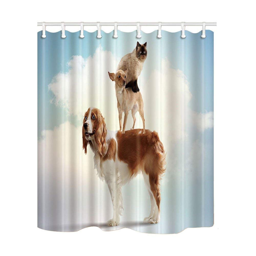 Amazon Jagfhhs Animals Decor Cat On The Back Of Dog Shower Curtains Polyester Fabric Waterproof Bath Curtain Hooks Included Home Kitchen