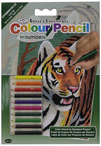 Colour Pencil Number Jungle Tiger