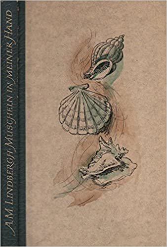 Muscheln In Meiner Hand Aus D Amerikan Von Maria Wolff