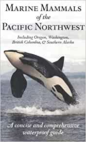 Marine Mammals Of The Pacific Northwest Including Oregon