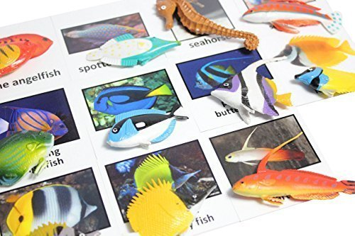 Montessori Fish Animal Match - Miniature Tropical Fish Figurines with Matching Cards - 2 Part Cards. Montessori learning toy, language materials