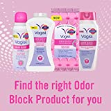 Vagisil Odor Block Feminine Deodorant Powder for