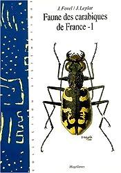 Faune des carabiques de France : Tome 1