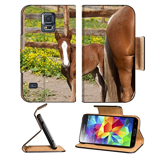 Luxlady Premium Samsung Galaxy S5 Flip Pu Leather Wallet Case IMAGE 21178920 A red foal with a white blaze
