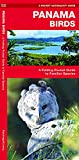 Panama Birds: A Folding Pocket Guide to Familiar Species (Wildlife and Nature Identification)