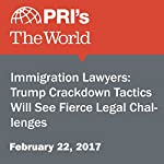 Immigration Lawyers: Trump Crackdown Tactics Will See Fierce Legal Challenges | Monica Campbell