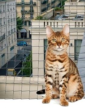 CPF Red de protección balcón para gatos 6 x 3 m-maille reforzada anti Morsures: Amazon.es: Productos para mascotas