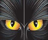 "Cat-rageous the Beast Translucent Window Decorations ""Double Window Design"""