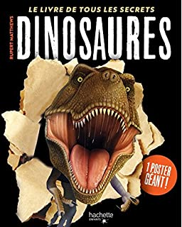 Le Livre Geant Des Dinosaures Amazon Fr Mary Greenwood