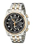 """Citizen Men's AT9016-56H """"World Time A-T"""" Stainless Steel Two-Tone Eco-Drive Watch"""
