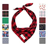 Lucy & Co. Dog Bandana - Designer Puppy Accessory for Boy and Girl Dogs - Includes 1 Limited Edition Print Bandana