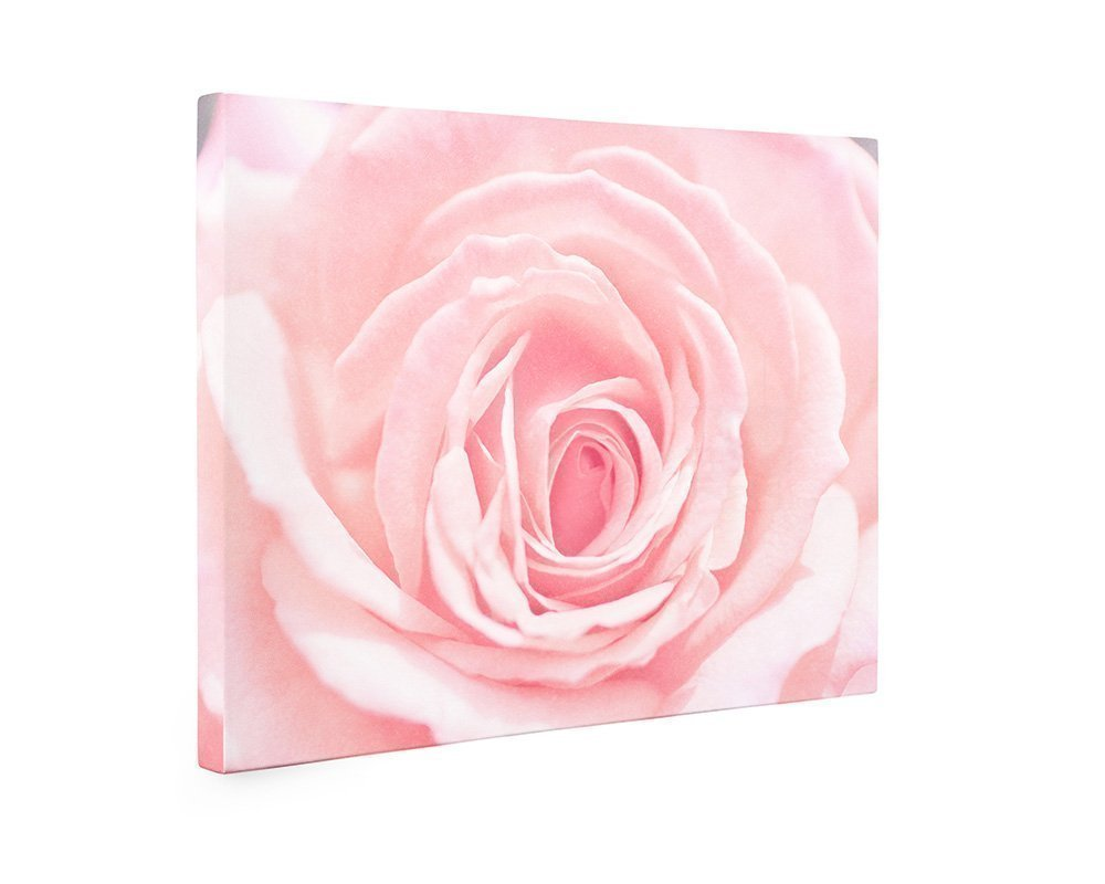 Large Format Prints, Canvas or Unframed, Pink Rose Flower Wall Art, Floral Decor 'Pink and Shabby'