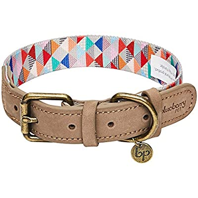 Blueberry Pet 10 Colors Polyester Fabric Webbing and Soft Genuine Leather Dog Collars, Leashes
