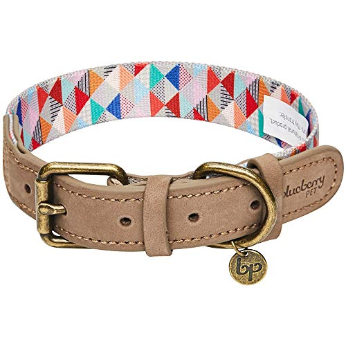 Blueberry Pet 2019 New Shades of Rainbow Multicolor Triangles Polyester Fabric Webbing and Soft Genuine Leather Dog Collar, Medium, Neck 15