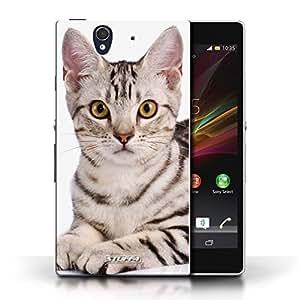 Kobalt® protector duro de nuevo caso / cubierta para el Sony Xperia Z | American shorthair Diseño | Razas de gatos colección