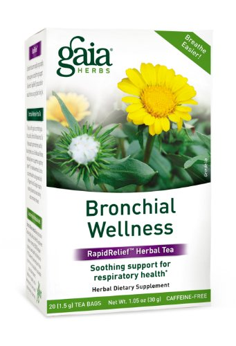 Gaia Herbs Bronchial Wellness Tea Bags, 20 Count (Pack of ()