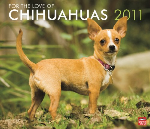 Chihuahua 2010 Calendar - Chihuahuas, For the Love of 2011 Deluxe Wall