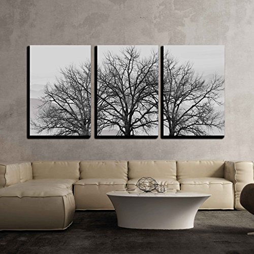 3 Piece Wall Decor - wall26 - 3 Piece Canvas Wall Art - Trees in Winter Gray Landscape - Modern Home Decor Stretched and Framed Ready to Hang - 16