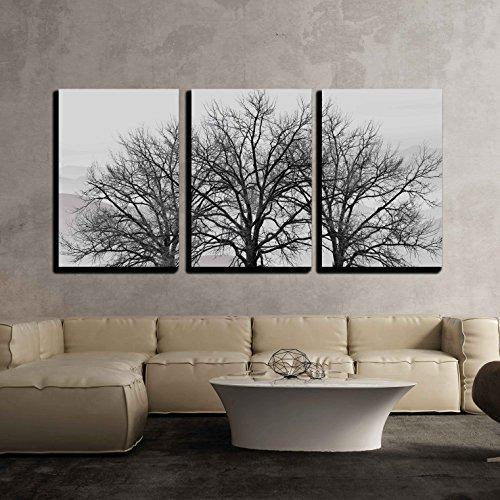 Trees in Winter Gray Landscape x3 Panels