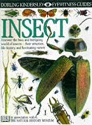Insect (Eyewitness Guides)