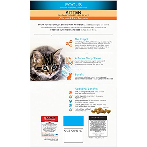 Buy dry food for kittens