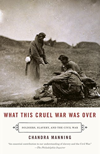 What This Cruel War Was Over: Soldiers, Slavery, and the Civil War (Letters From The Civil War Confederate Soldiers)
