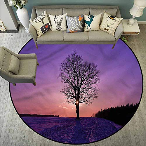 Living Room Area Round Rugs,Nature,Oak Sunset Winter Time,Super Absorbs Mud,3'7
