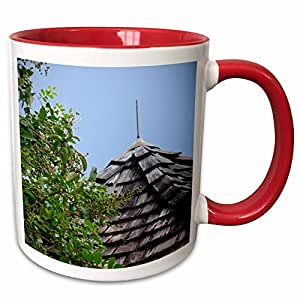 3dRose Susans Zoo Crew Photography - Wooden split shingle cupola sky tree - 11oz Two-Tone Red Mug (mug_164459_5)